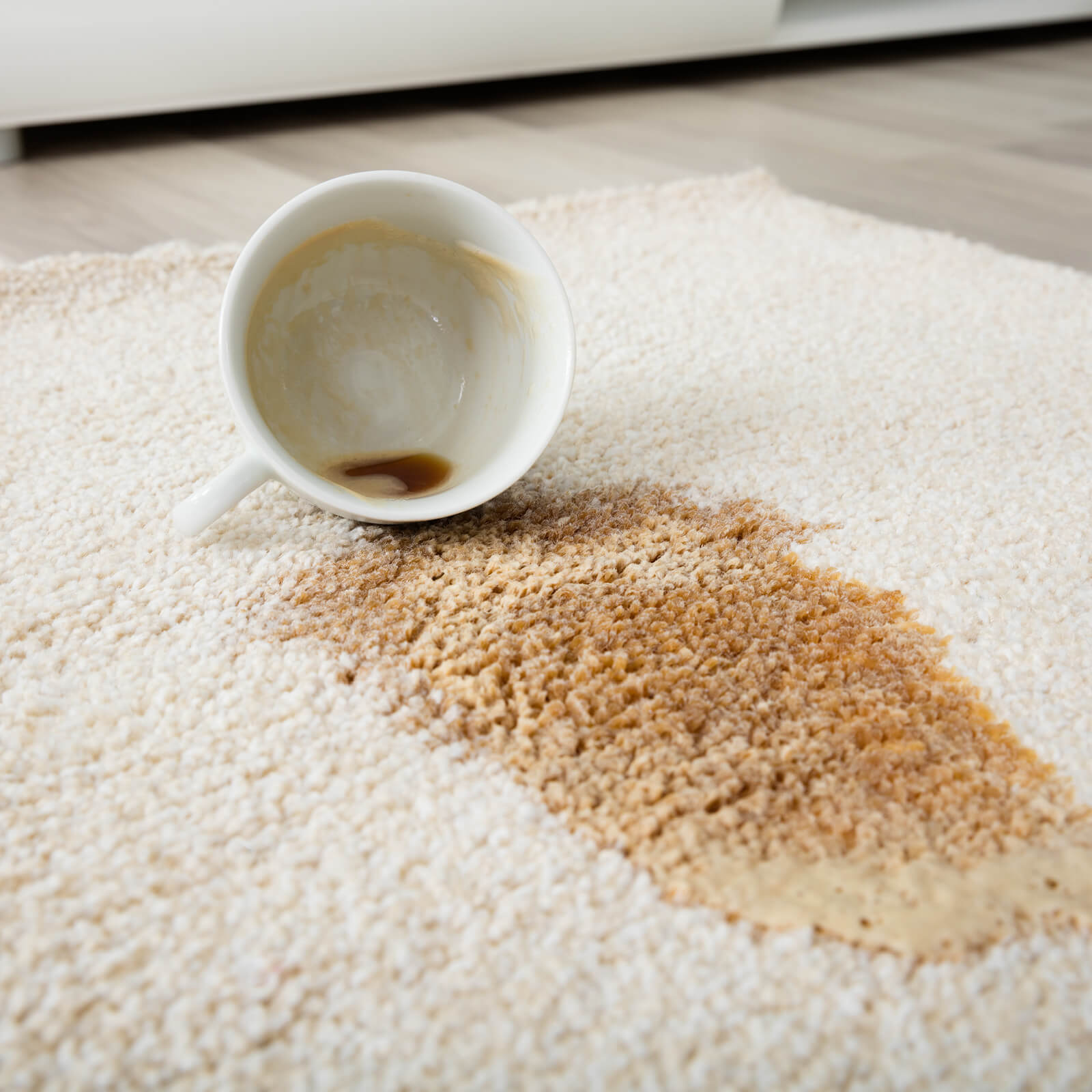 Tea stain on Carpet | Speers Road Broadloom
