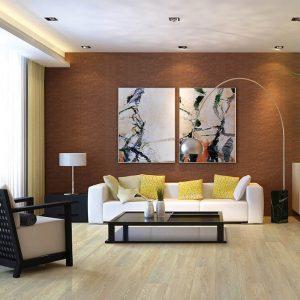 Living room interior   Speers Road Broadloom