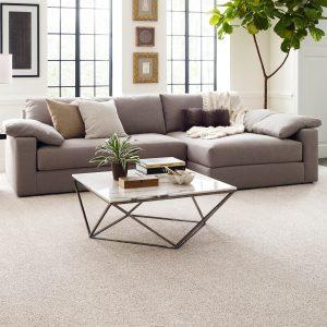 Living room view with Carpet flooring | Speers Road Broadloom
